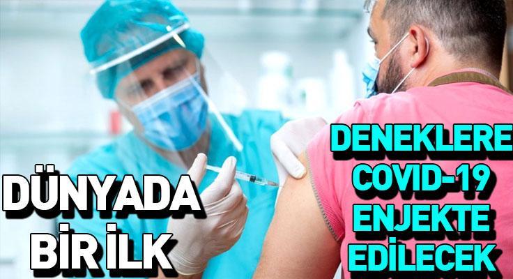 İngiltere bir ilke imza atıyor! Genç gönüllülere bilinçli olarak koronavirüs bulaştırıla...
