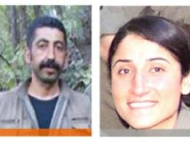Turuncu ve gri kategorideki teröristler öldürüldü